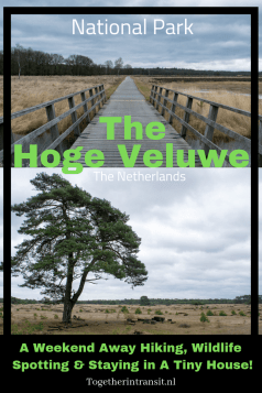 The Hoge Veluwe Weekend Away is well worth the trip in any weather! From spotting wildlife to cyclying and hiking, its perfect for all! togetherintransit.nl
