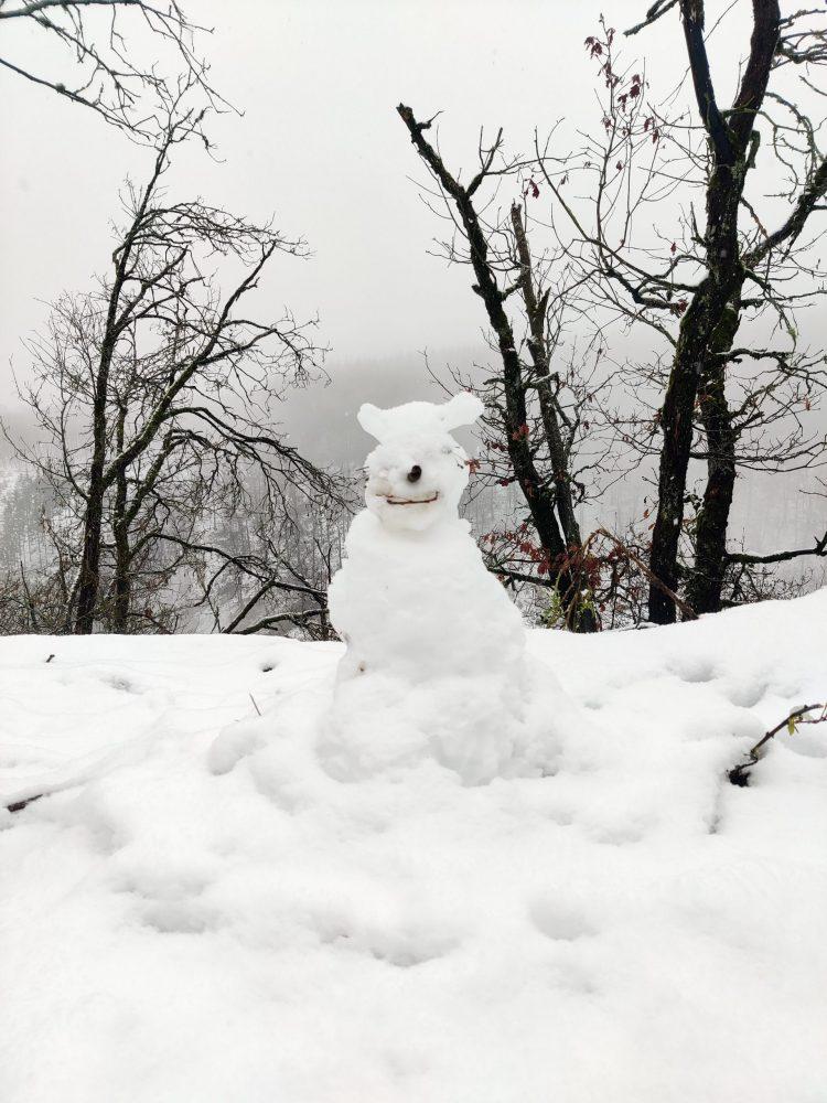 snowman in a shape of a bear