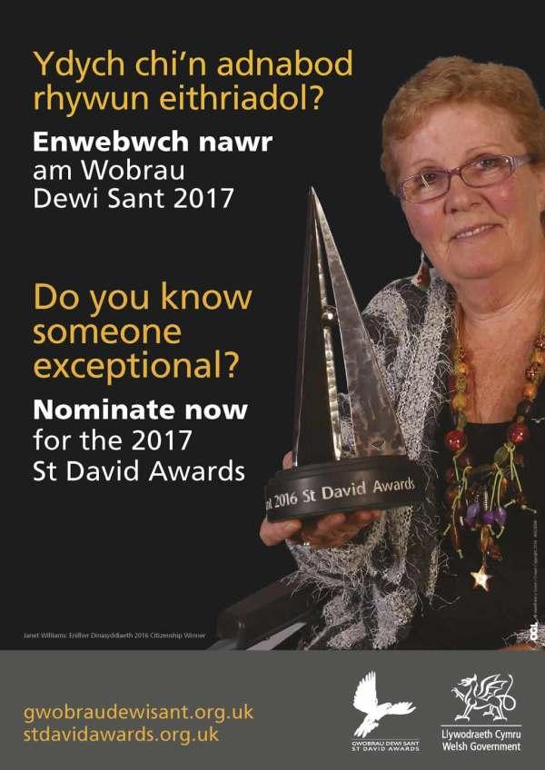 28540 St David Award Posters_WEB_Page_3