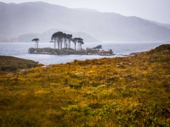 Jurassic Island Loch Assynt