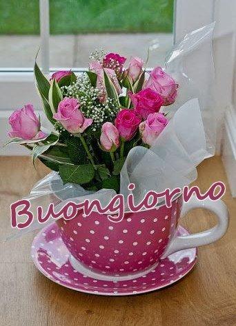 Fiori, Primavera buongiorno nuove immagini gratis WhatsApp, Facebook, Instagram, Pinterest, Twitter