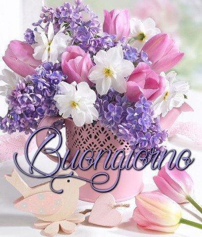 buongiorno fiori primavera immagini nuove gratis whatsapp facebook