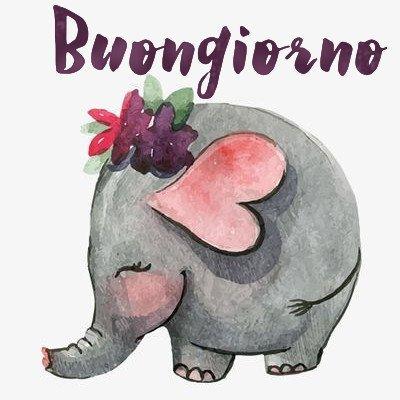 buongiorno elefantino immagini nuove gratis whatsapp facebook