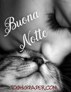 buonanotte gattino immagini gratis WhatsApp nuove bacionotte dolci sogni