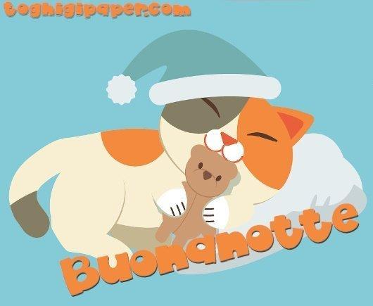 buonanotte gatti, immagini nuove gratis per WhatsApp e Facebook