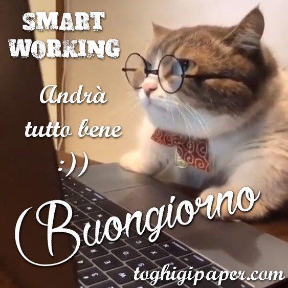 buongiorno gatto #iorestoacasa andrà tutto bene immagini nuove gratis whatsapp facebook