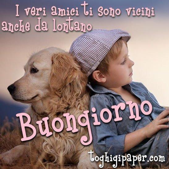 buongiorno amicizia cagnolino immagini nuove gratis whatsapp facebook