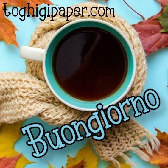 Buongiorno autunno immagini nuove gratis whatsapp facebook Instagram Pinterest