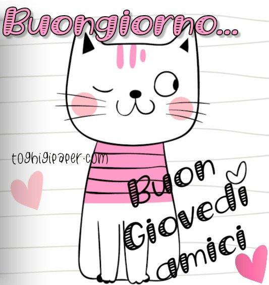 Buon Giovedì buongiorno gatti immagini nuove gratis whatsapp facebook Instagram Pinterest