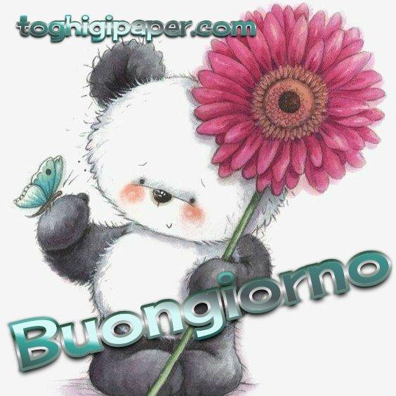 Primavera buongiorno nuove immagini gratis WhatsApp, Facebook, Instagram, Pinterest, Twitter