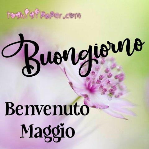 1 Maggio benvenuto buongiorno immagini nuove gratis whatsapp facebook Instagram Pinterest