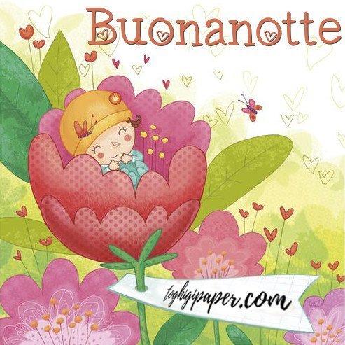 Buonanotte bellissime immagini gratis WhatsApp nuove bacionotte dolci sogni per WhatsApp, Facebook, Pinterest, Instagram, Twitter