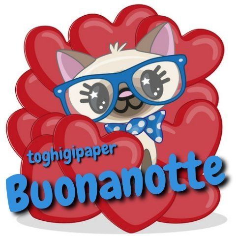 Gatti buonanotte cuore immagini nuove gratis WhatsApp Facebook, Instagram, Pinterest, Twitter