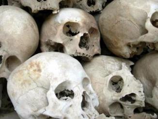 crane Sectes et magie: des ritualistes étrangers auraient trouvé refuge au Togo [Alerte]