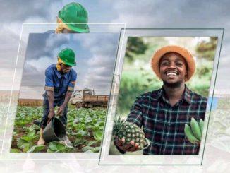 cofina MIFA e1631175628673 Agriculture: l'opportunité COFINA pour le MIFA