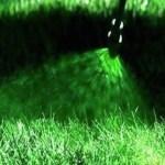 枯れ木も一瞬で豊かな緑にする中国の緑化技術