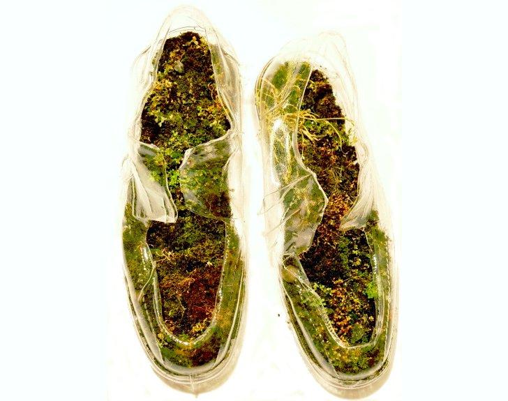 moss shoes/ sensoree