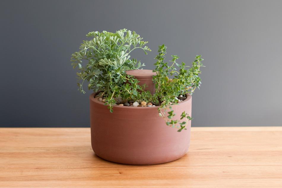 self watering planter/ Joey Roth