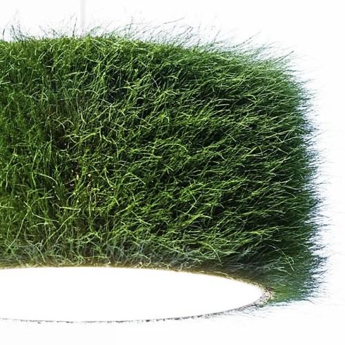 grassland grass lamp/ 360seegallery