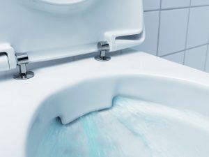 Comment Changer Un Abattant De Wc Suspendu Les Toilettes Et Wc
