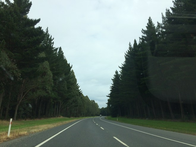 viajar de carro pela nova zelandia to indo viajar 2