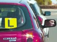 carteira de motorista na nova zelandia drive license full habilitação 2