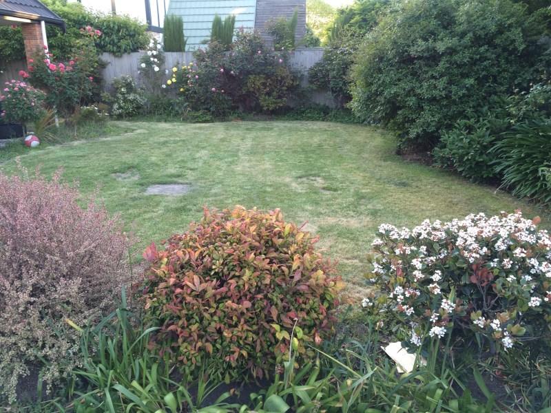 clima na nova zelandia primavera