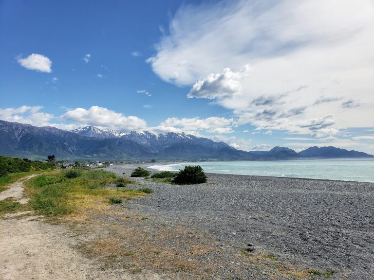 Kaikōura, Canterbury, New Zealand – 1 Day Trip