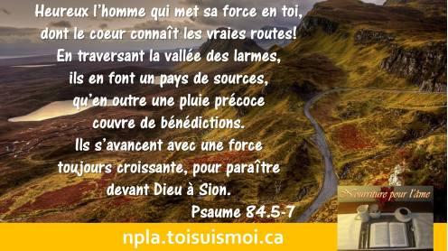 Heureux l'homme qui met sa force en toi, dont le cœur connaît les vraies routes ! En traversant la vallée des larmes, ils en font un pays de sources, qu'en outre une pluie précoce couvre de bénédictions. Ils s'avancent avec une force toujours croissante, pour paraître devant Dieu à Sion.