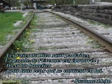 Les voies de Dieu sont parfaites, La parole de l'Eternel est éprouvée ; Il est un bouclier pour tous ceux qui se confient en lui.