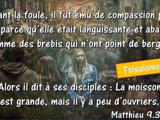 Matthieu 9.36-37