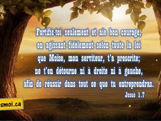 Josué 1.7