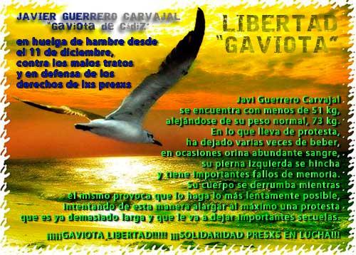 LIBERTAD-GAVIOTAweb