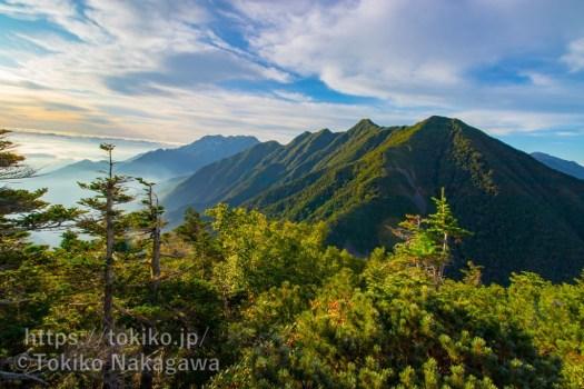 甲斐駒ヶ岳登山道からみた鳳凰三山