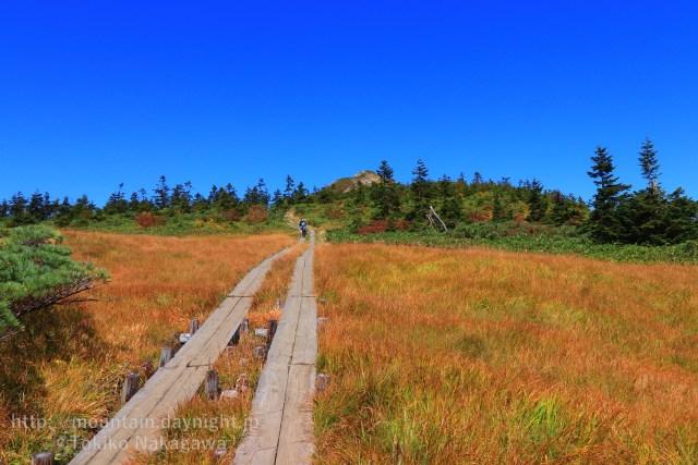 湿原と小至仏山