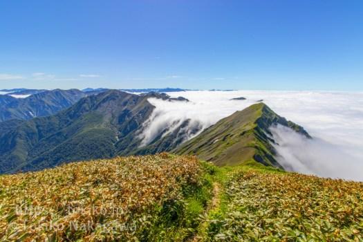 エビス大黒ノ頭と万太郎山の間の滝雲