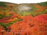 大雪山赤岳の紅葉