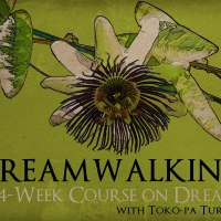 Dreamwalking – A 4-week (online) Course on Dreams
