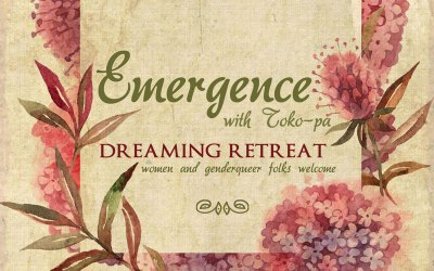 Emergence: A Wisconsin Weekend Dreaming Retreat