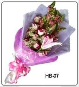 HB07-1