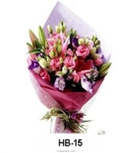 HB15-1