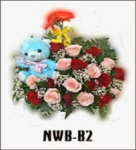 NWB07