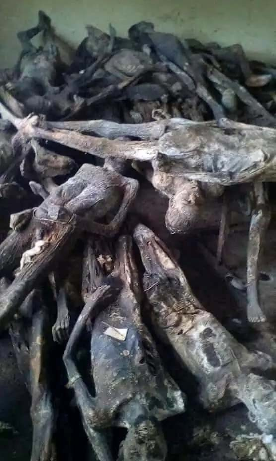 Togolese Police Discover 2000 Human Dried Corpse, 500 Persons Buried Alive After Raid On Richest Native Doctor's Compound