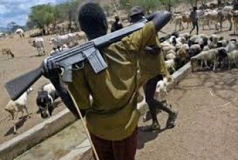 Tears Sorrow and Blood - How Fulani Herdsmen Allegedly Ogun State Communities To Slaughter Fields