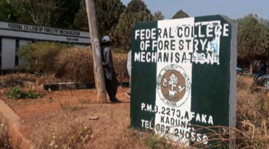 KADUNA ABDUCTION: Gunmen Release Video, Demand N500m Ransom {WATCH IT HERE}