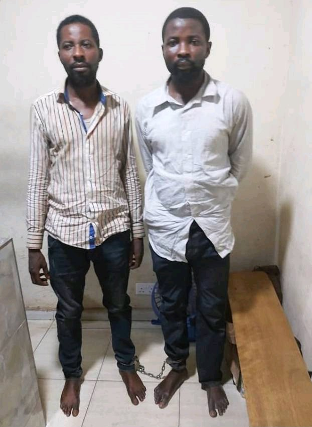 Please Forgive Me I don't Want to Catch Coronavirus in Prison, Thieve Begs After Stealing 1,000 Bags of Rice