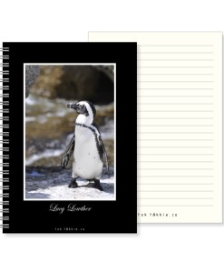 Tok tokkie Notebook – A5 Photo – 2