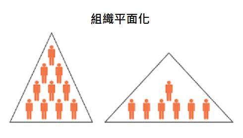 組織平面化
