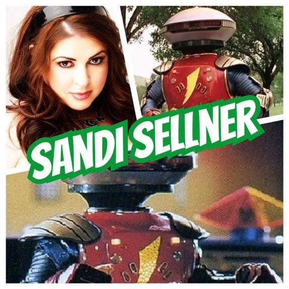 Sandi Sellner.jpg