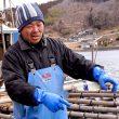 宮城県の志津川港の牡蠣漁師さん